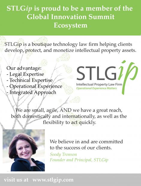 STLG-GIS